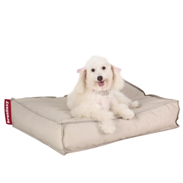 Já pensou em adquirir Puff para cães?