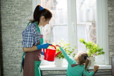Como colocar plantinhas em casa e apartamento, nos lugares mais inusitados