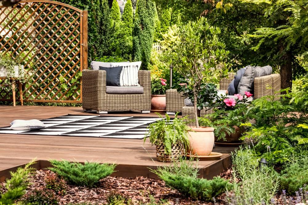 Plantas para jardim: veja quais são as espécies ideais e quais escolher
