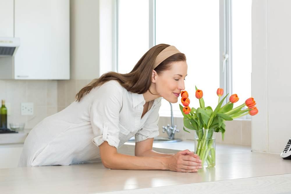 5 dicas para deixar sua casa sempre cheirosa