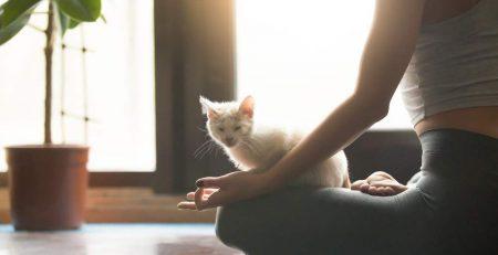 espaço zen em casa